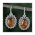 Amber dangle earrings, 'Honey Drops' (India)
