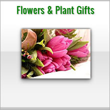 unique flowers and plant gifts